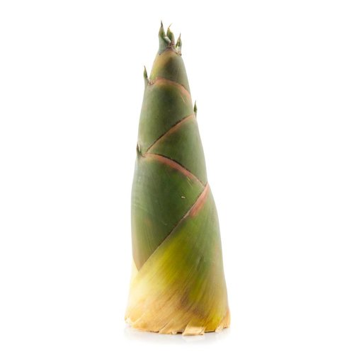 Bamboo Shoot  Approx 500g