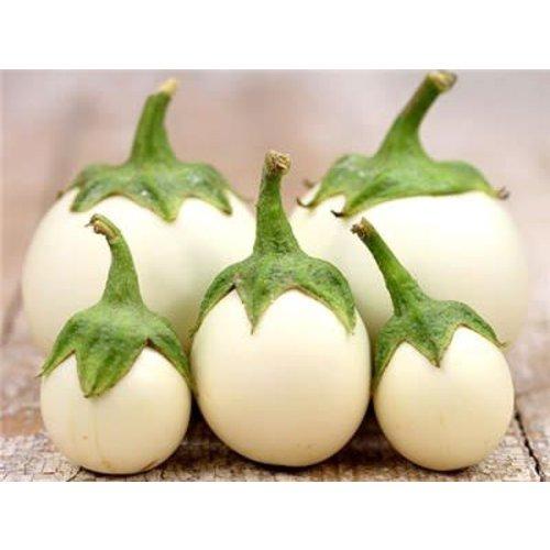 White Eggplant 200g