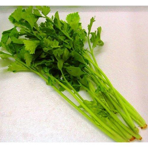 Thai Celery 100g