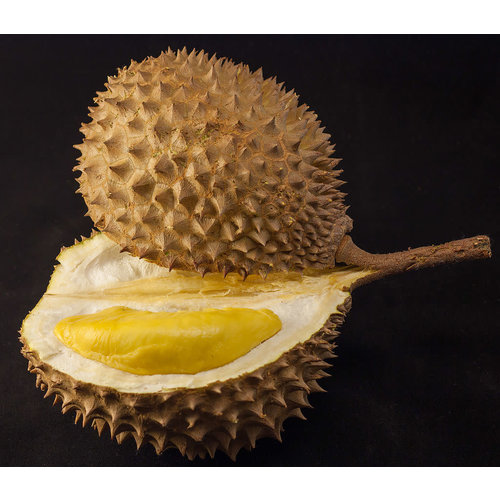 Durian Approx 2.6Kg
