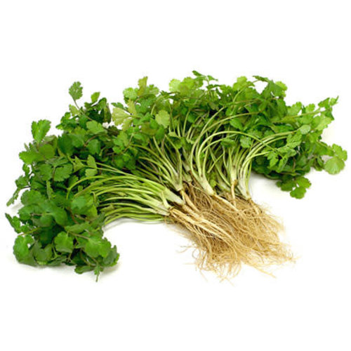 Coriander with Root / ผักชี 80g