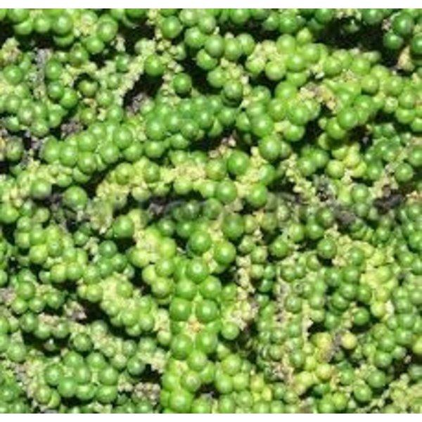 Peppercorns 100g