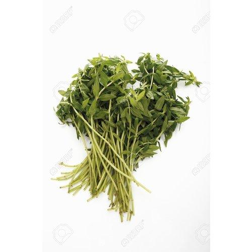 Finger Grass (Pak Kayang) 100g