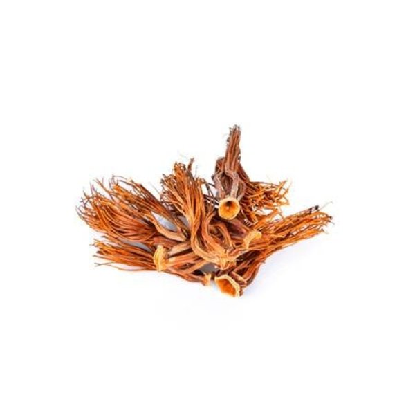 Dried Silk Cotten Flower / Dok Ngiew ดอกงิ้ว 50g