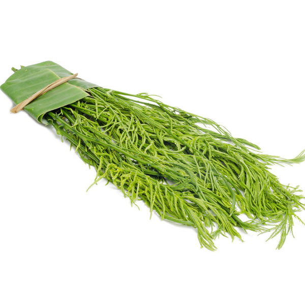 Acacia (Cha Om) ชะอม 100g