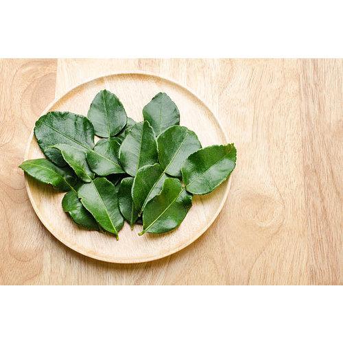 Vivanda Kaffir Lime Leaves (Frozen)100g  FOR A.M. DELIVERY ONLY