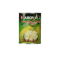 Aroy D Young Green Jackfruit in Brine 565g