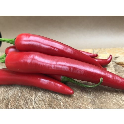 Big Red Chilli Approx 100g - 125
