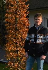 """""""Lamas"""" Grijs Wollen vest met bruin  ingebreid patroon voor hem en haar."""