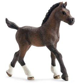 Schleich Schleich Horses 13762 - Arabisch veulen