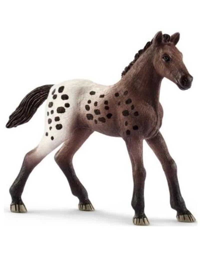 Schleich Schleich Horses 13862 - Appaloosa veulen