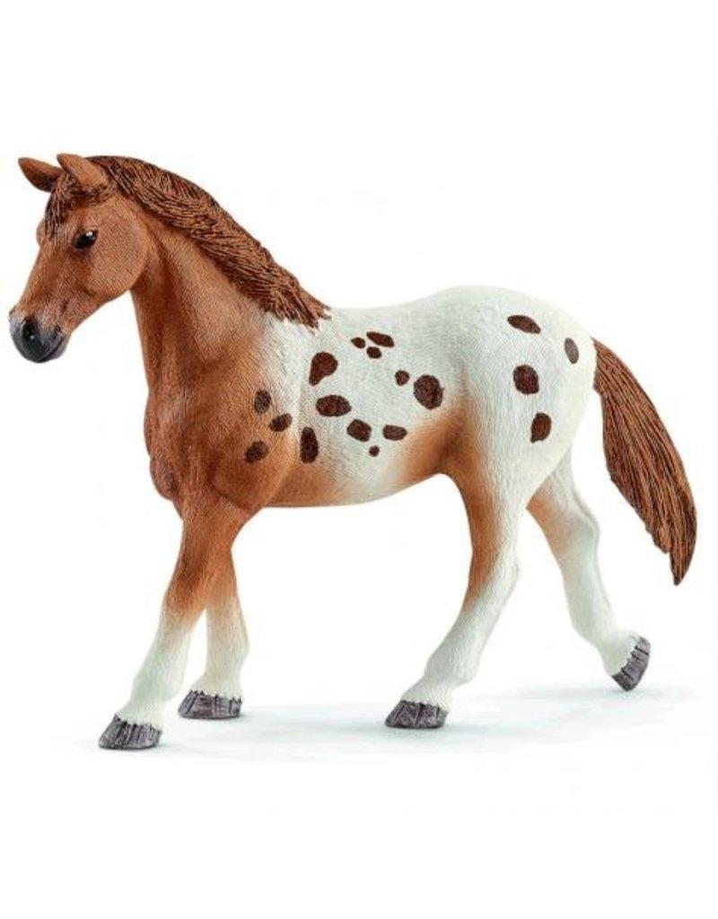 Schleich Schleich Horses 42433 - Toernooi trainingsset