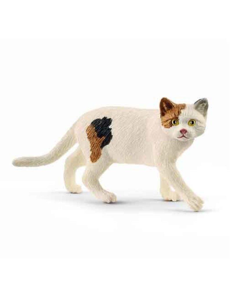 Schleich Schleich CAT 13894 - Amerikaanse kortharige kat