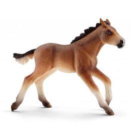 Schleich Schleich Horses 13807 - Mustang veulen