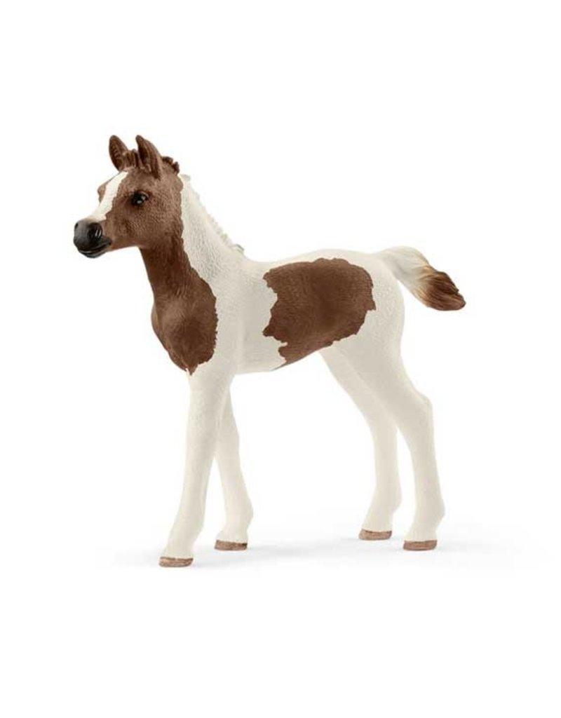 Schleich Schleich Horses 13839 - Pinto Arabier veulen