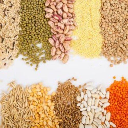 Grains, Flour & Legumes