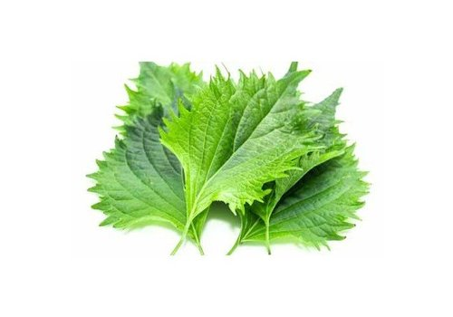 Shiso leaves, 15 pcs