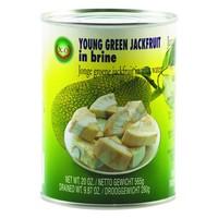 Green Jackfruit, 540g