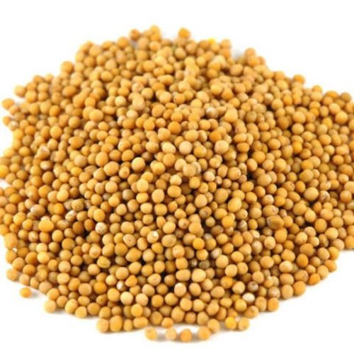 Yellow Mustard Seeds, 30g