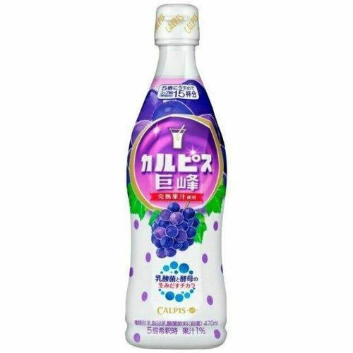 Asahi Calpis Grape Syrup Concentrate, 470ml
