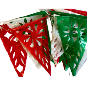 Mexican tricolor slinger, 8m