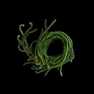 Fresh Long Bean, 500g