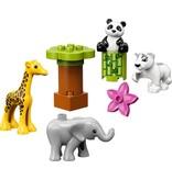 LEGO DUPLO  LEGO DUPLO 10904 - Babydieren