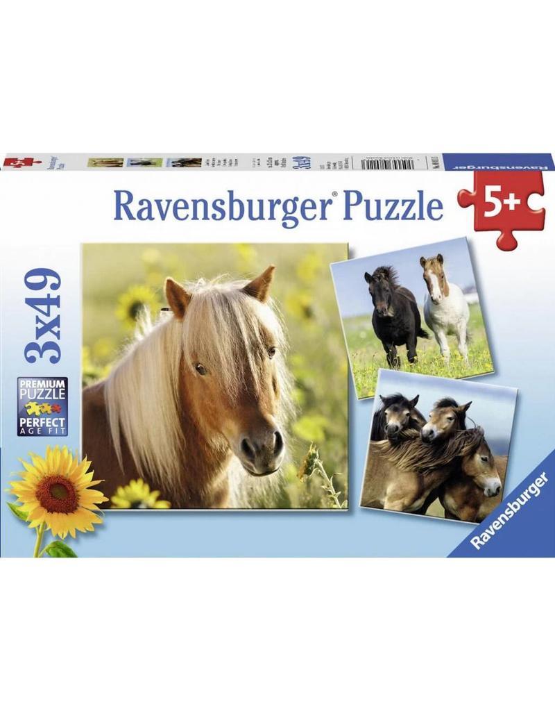 Puzzel Ravensburger Schattige pony's 3 x 49 stukjes