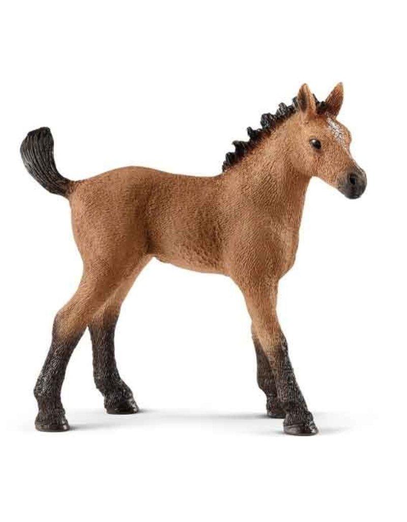 Schleich Schleich Horses 13854 - Quarter horse veulen