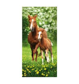 Badlaken paarden 70 x 140 cm