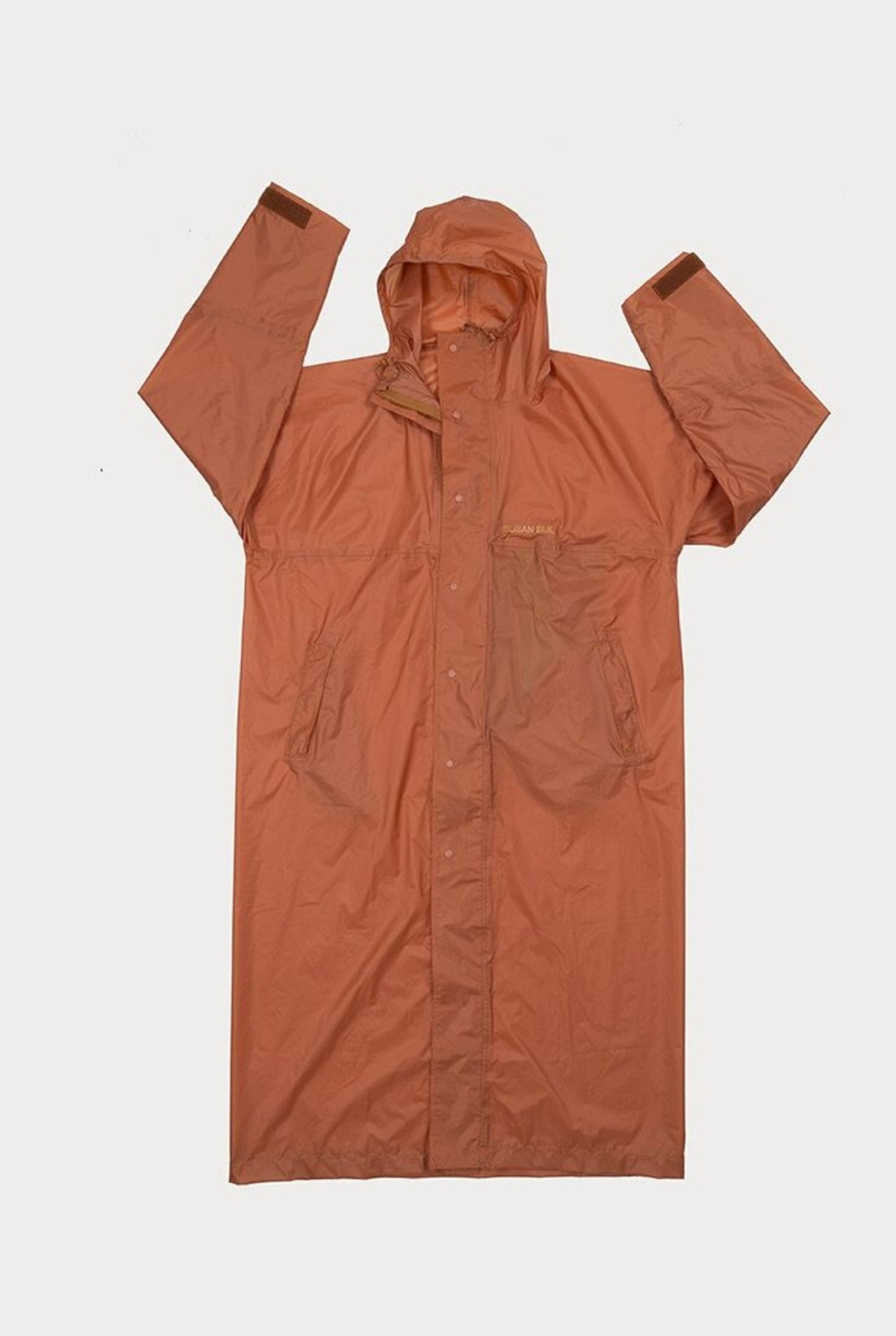 Raincoat Horse