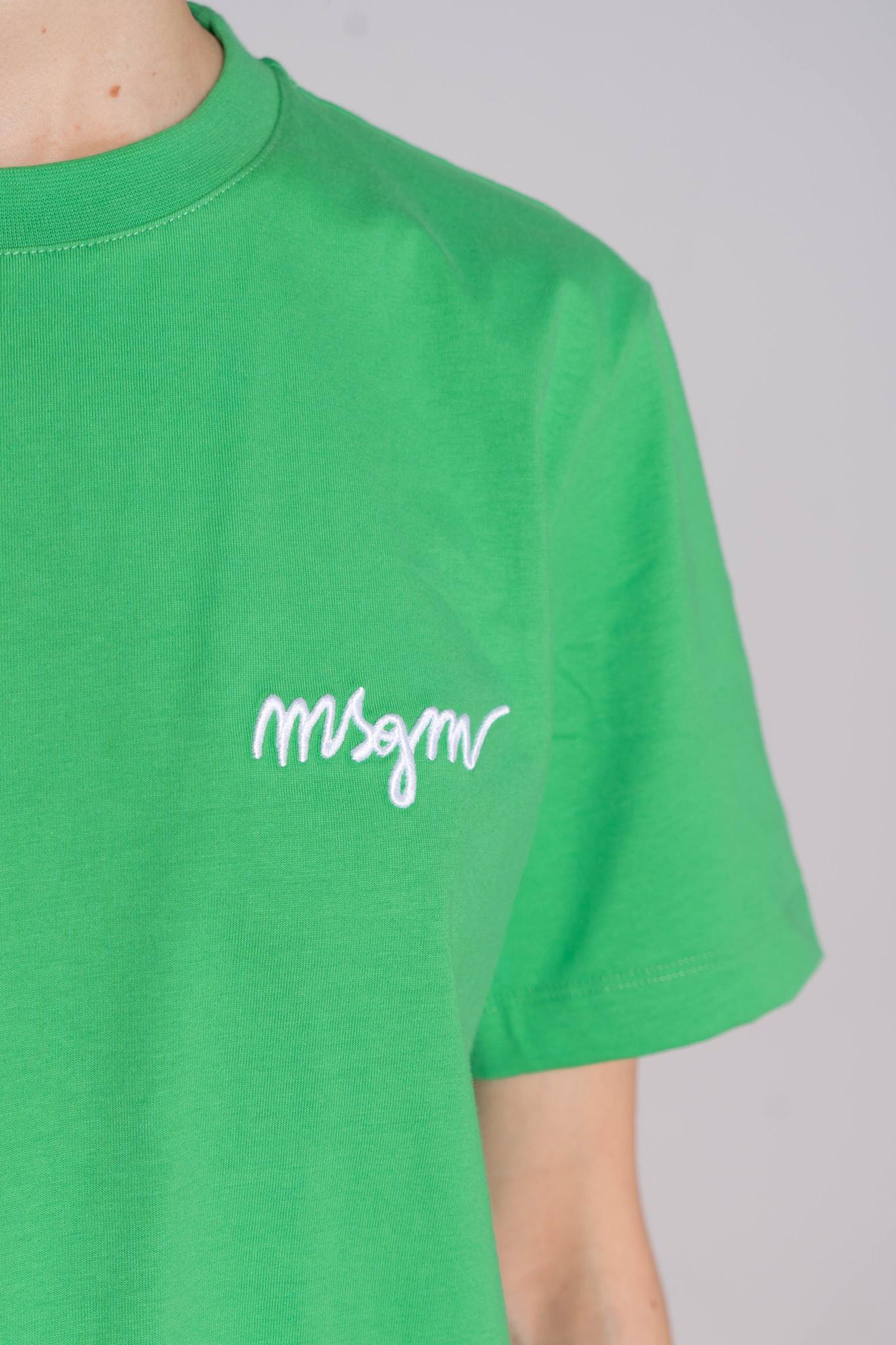 Basic T-shirt Luminious Green