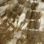 Egypt Heel Moss Tie Dye