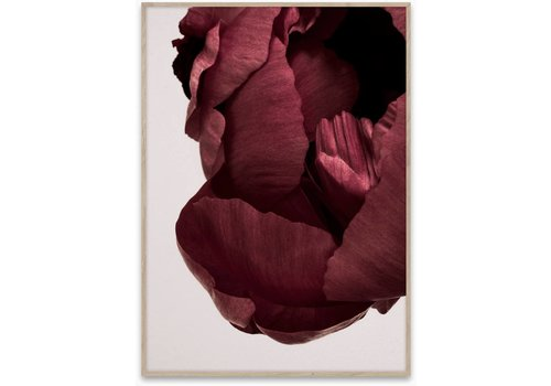 Paper Collective Peonia 02 poster 50x70cm