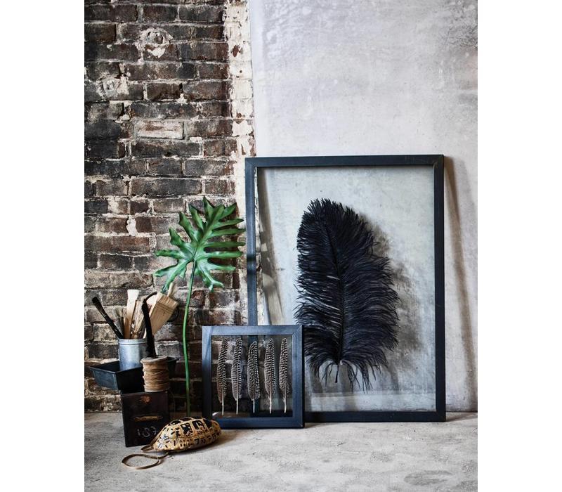 Metalen kunstframe met glas en struisvogelveer