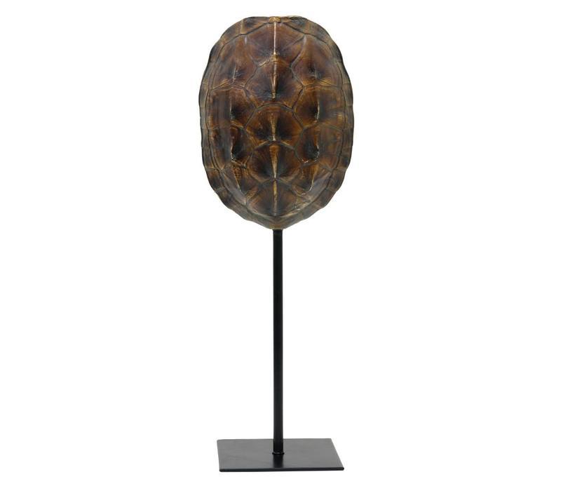Schildpaddenschild bruin