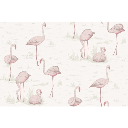Cole & Son Flamingos behangpapier - Contemporary restyled