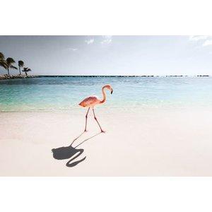 IXXI IXXI Wanddecoratie - Pink Paradise