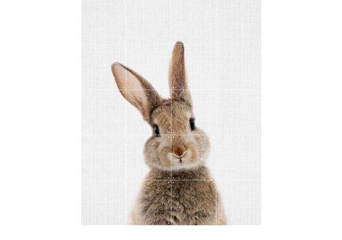 IXXI IXXI wanddecoratie Rabbit