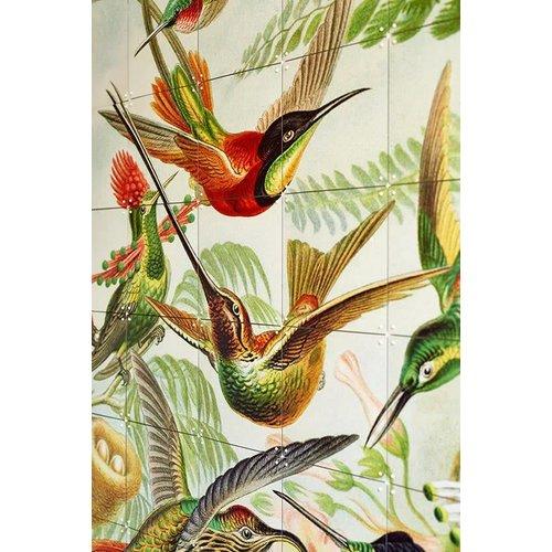 IXXI IXXI Wanddecoratie - Hummingbirds