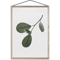 Floating Leaves 05 poster A4