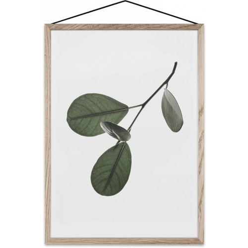 Paper Collective Floating Leaves 05 poster A4