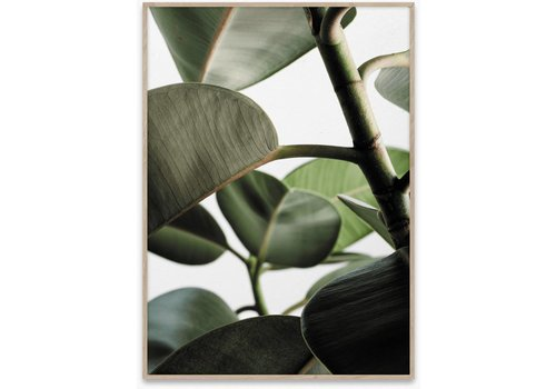 Paper Collective Green home 03 poster 50x70cm