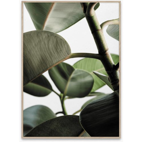 Paper Collective Green home 03 poster 50x70