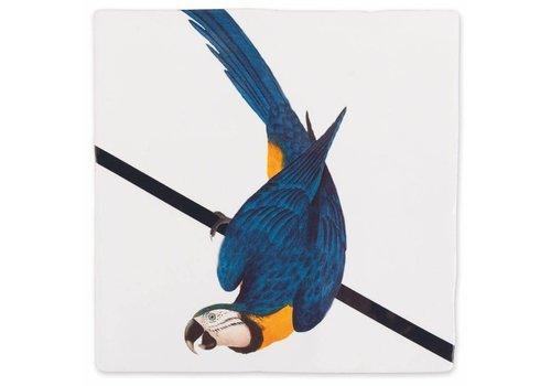 StoryTiles tegel Blauwe papegaai