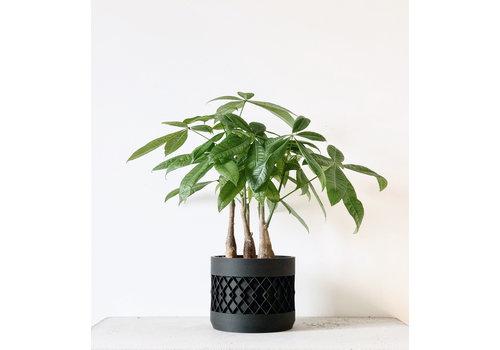 Minimum Design Aztek bloempot zwart Ø12cm