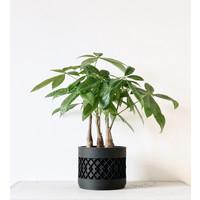 Aztek bloempot zwart Ø8,5cm