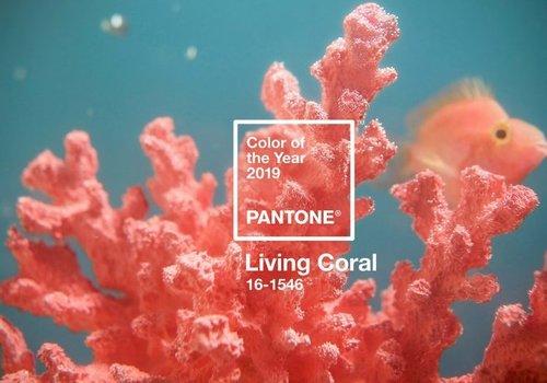 Kleur van het jaar 2019: 'Living Coral'