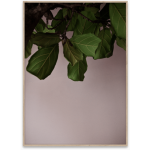 Paper Collective Green leaves poster 50x70