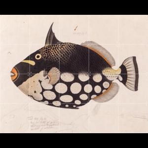 IXXI IXXI Wanddecoratie - Black Fish